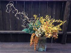 corkscrew hazel, date palm, succulents, james story orchids, cymbidium orchids, ti leaves