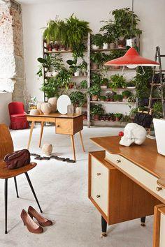 18 Indoor Herb Garden Ideas--Bookshelf Herb Garden