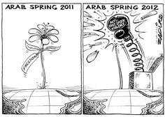 Arab Spring, Zapiro