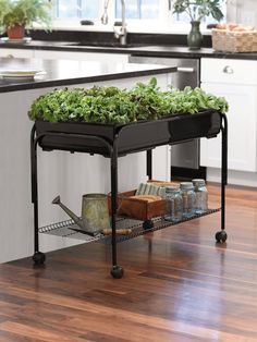 Mobile Grow Cart - Keep the cart with herbs and plants outside during the summer.  Then, during the winter, wheel the cart inside.