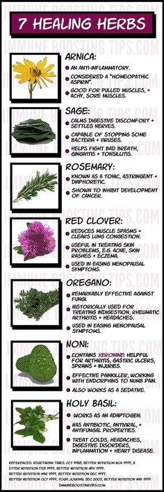 Medicinal Herbs for healing: some the best medicinal plants for healing and boos
