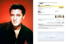 A transgenic mouse cloned from a hair sample of the king of rock 'n' roll, by Koby Barhad