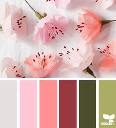 Design Seeds #colorpalette #colorpalettes #kleuren #kleur #kleurentrends #colour #colours #colour #palette #design   For more colour trends 2017 check http://www.wonenonline.nl/interieur-inrichten/kleuren-trends/