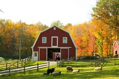 Classic barn                                                                                                                                                                                 More