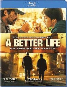 A Better Life - Demian Bichir is incredible.