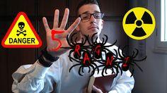 I 5 ragni più pericolosi e velenosi del mondo