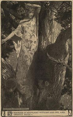 elizabeth shippen, painting art, shippen green, bats, book illustrations, red roses, ghost moth, moonlight, owls