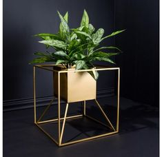 Silver Home Accessories, Home Interior Accessories, House Plants Decor, Plant Decor, Gold Leaf Design Group, At Home Furniture Store, Decoration Plante, Square Planters, Floating