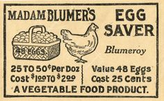 Digital Download - Antique Grocery Egg Advertisement by KnickofTime