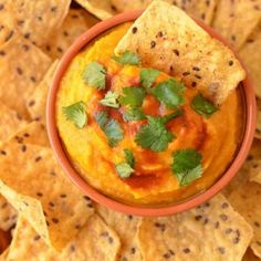 Chipotle Butternut Squash and White Bean Dip Recipe