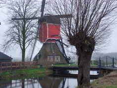 Molen De Rooie Wip in Hazerswoude in de adventstijd Wind Mills, Le Moulin, Leiden, Wind Turbine, Holland, Dutch, Winter, Windmill, Europe