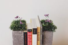 Bring nature into your home with these easy, cheap, and adorable garden topped brick bookends!