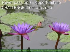 Never pass up an opportunity to CHALLENGE the status quo