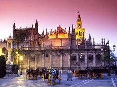 The Cathedral of Seville is a majestic and historic Roman Catholic church. Inside, visitors can see the tomb of Christopher Columbus.