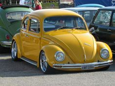 My momma loved VW beetles and she drove an orange one,but always wanted a yellow one because yellow is her favorite color.