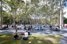 Macquarie University Central Courtyard by HASSELL « Landscape Architecture Works | Landezine