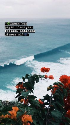 Photography beautiful nature bucket lists new ideas Aesthetic Backgrounds, Aesthetic Iphone Wallpaper, Aesthetic Wallpapers, Tumblr Wallpaper, Wallpaper Backgrounds, Wallpaper Pictures, Wallpaper Quotes, Forest Wallpaper Iphone, Peaceful Backgrounds