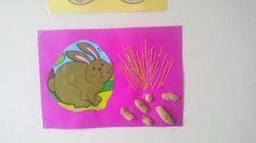 Fıstık-makarna-tavşan