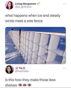 Funny Tweets, Funny Memes, Ikea Shelves, Wire Fence, Morning Humor, Popular Memes, I Laughed, Funny Pictures, Give It To Me
