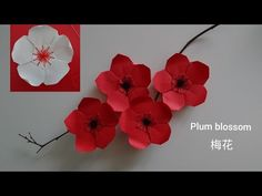 Origami Plum Blossom Flower - watch needle threading at approx. Origami Design, Diy Origami, Gato Origami, Origami Swan, Origami Star Box, Origami Paper Art, Origami Dragon, Origami Fish, Origami Folding