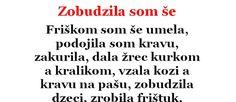 VTIP DŇA: Zobudzila som še | Chillin.sk Dna, Math Equations, Gout
