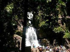San Juan Rain Forest