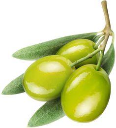 картины оливки - Поиск в Google