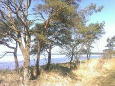 Wanderung von Glowe nach Breege  http://ruegen-blog.com/cgi-bin/weblog_basic/index.php?p=4850