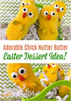 Adorable Chick Nutter Butter Easter Dessert Idea  These cute little chicks would be such a delicious Easter dessert idea to make with your kids!  #easter #easterrecipes #easterdessert #dessertrecipes #dessertfoodrecipes #desserts #nutterbutter #kidfriendlyrecipes #sunshinewhispers