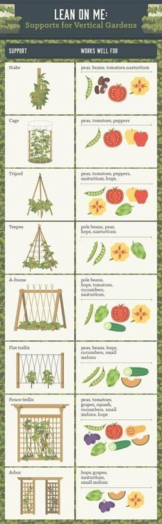 Vegetable Garden Layout - Inspirational Vegetable Garden Layout, ideas for ve able garden layout perfect az home plan best #vegetablegardeninglayout