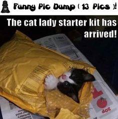 Funny Pic Dump ( 13 Pics )