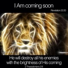 As the Lion of Judah, He fulfills the prophecy of Genesis and is the Messiah who would come from the tribe of Judah. As the Lamb of God, He is the perfect and ultimate sacrifice for sin. Two aspects of Christ's nature Revelation 22, 2 Thessalonians, Tribe Of Judah, Jesus Is Coming, Lion Of Judah, Lord And Savior, King Jesus, King Of Kings, Favim