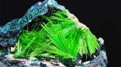 Uranium-containing cuprosklodowskite. 10 Beautiful Minerals You Won't Believe Are Found on Earth