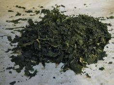 Dehydrated Swiss Chard (in the oven)