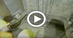 Ανατριχίλα! Η στιγμή που ανοίγουν τον τάφο του Κυρίου ημών Ιησού Χριστού… [Εικόνες-Βίντεο] | ΑΡΧΑΓΓΕΛΟΣ ΜΙΧΑΗΛ