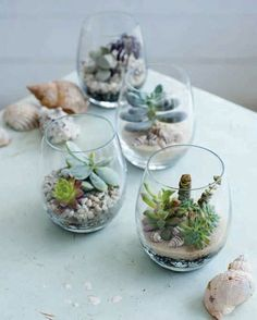 Your Home is Lovely: interiors on a budget: Tiny gardens
