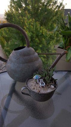 Tea garden 2016
