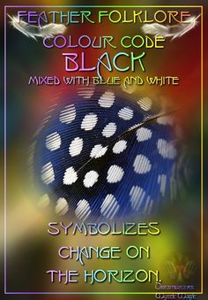 Black mixed with blue and white Feather - symbolizes change on the horizon.