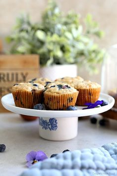 The fluffiest gluten free blueberry muffins recipe! These healthy + easy + dairy-free blueberry oat muffins are seriously the best gluten-free muffins! Oat Muffins Healthy, Gluten Free Blueberry Muffins, Gluten Free Oats, Gluten Free Baking, Blue Berry Muffins, Baking Cookbooks, Dairy Free Yogurt, Frozen Blueberries, Recipe For Mom