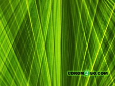 Palm Leaf Rays will brighten up anyone's boring desktop. Make this your wallpaper today! Desktop, Palm, Neon Signs, Leaves, Wallpapers, Home Decor, Decoration Home, Room Decor, Wallpaper