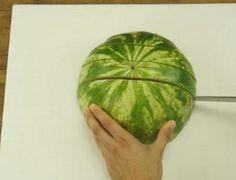 titmelon-1-600x460
