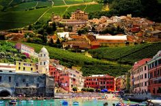 IGoTravel - AUTHENTIC TRAVEL EXPERIENCES - ART OF LIVING: BAROLO, PORTOFINO, CINQUE TERRE