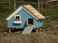 Small Duck House