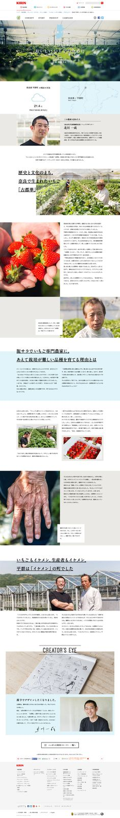 The website:  http://www.kirin.co.jp/products/rtd/hyoketsu/kajitsuproject/story_1.html Site title: 奈良県 平群町 いちご専門農家 辻本 忠雄さん|「いいね!ニッポンの果実。」プロジェクト|キリン 氷結®|キリン