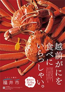 ポスター作成:福井市おもてなし観光推進室