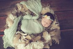 "Newborn Photography Props - Pea Cheesecloth - 6 ft long ""I use my wraps at every session...love them!!!! Bird Nest Baby in Shawnee, OK"""