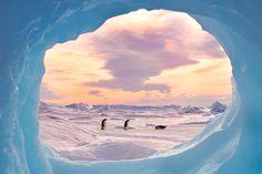 Dans l'œil du photographe - National Geographic France