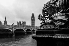 Travel Photography: Something Fishy, London, England » acalbright.com