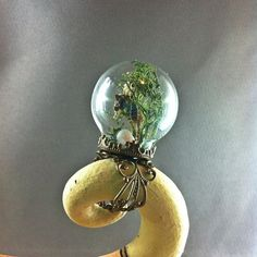 Seahorse Bowery. Real seahorse with seashells in a bubble aquarium mermaid ring. CleverKimsCurios, $25.00 hippie boho