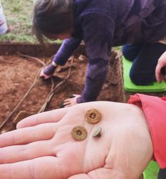 How appropriate is it that two of our #digmontpelier expeditioners who are 19th century period clothing seamstresses AND participate in reenactments came across these 3 buttons?! #archaeology #historicalarchaeology #experiencinghistory #historichomes #history #digva #visitva #montpelier_arch curated by http://mvn.click/1IuYwR4